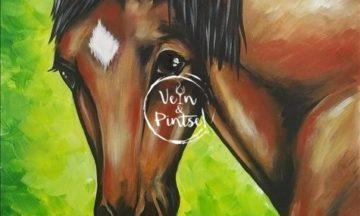 Minu hobune – Vali oma värvid